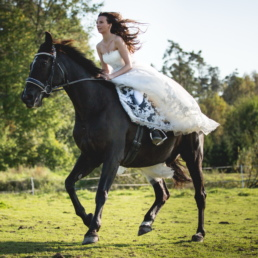 Sesja ślubna na koniu, galop
